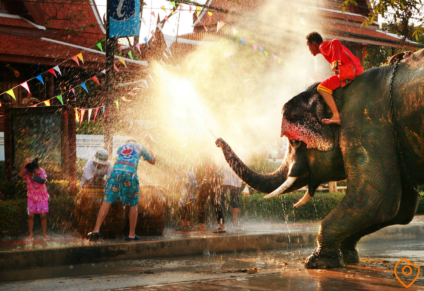 Songkran in chiang mai with an elephant